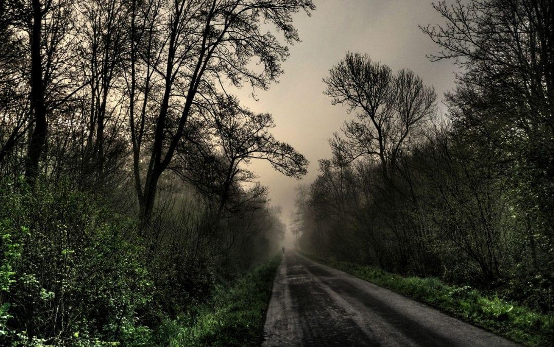 Trudge the road of happy destiny